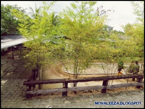 Pengalaman menarik di Farm In the City Seri Kembangan Selangor