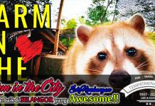 Farm in The City Tempat Menarik di Seri Kemangan Selangor