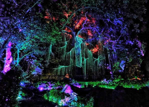 Image result for Penang Avatar secret garden