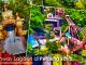 Sunway Lagoon Taman Tema Air Terbaik Di Malaysia