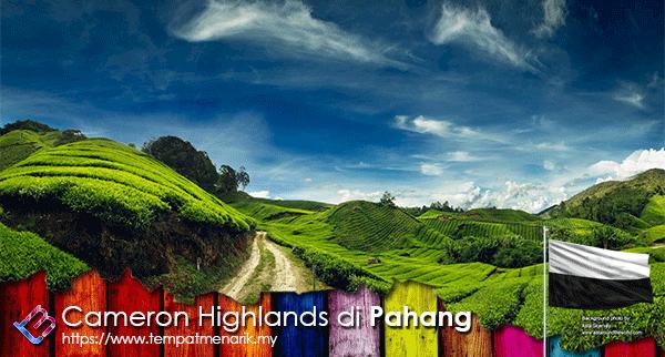 Cameron Highland Percutian Hebat Di Pahang Tempat Menarik