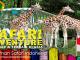 Taman Safari Indonesia