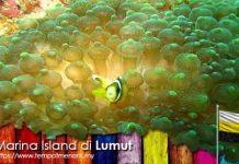Marina Island Tempat Menarik di Lumut Perak