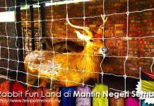 Rabbit Fun Land