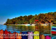 Pulau Sapi Tempat Menarik di Beluran Sabah