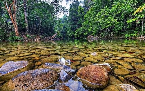 Air Terjun Buaya Sangkut Di Johor Lokasi Yang Terbaik Jom Cuti Cuti Ex Plore Pahang Rompin Taman Negera Endau Rompin Of Air Terjun Buaya Sangkut Di Johor Lokasi Mandi Manda Yang Permai Untuk Pelancong
