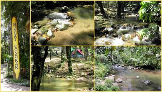 Air Terjun Congkak Di Selangor Lokasi Yang Terbaik Sungai Congkak Recreational forest Chongkak Park and Resort Of Air Terjun Congkak Di Selangor Lokasi Mandi Manda Yang Terbaik Untuk Pelawat