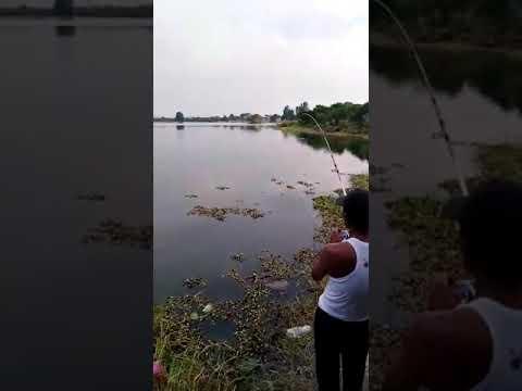 Air Terjun sorinsim Di Sabah Lokasi Yang Terhebat Memancing Lombong Pulau Jalan Sungkai Bidor Youtube Of Air Terjun Sorinsim Di Sabah Lokasi Mandi Manda Yang Mempersonakan Untuk Mandi-manda