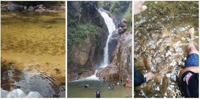 Air Terjun Sungai Chiling Di Selangor Lokasi Yang Baik 39 Tempat Menarik Di Selangor Edisi 2018 Panduan Bercuti Selangor Of Air Terjun Sungai Chiling Di Selangor Lokasi Mandi Manda Yang Terbaik Untuk Mandi-manda