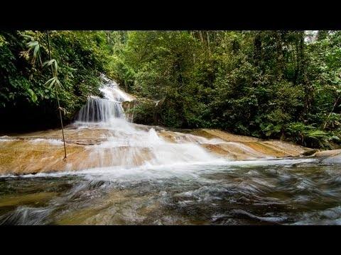 Air Terjun Sungai Chiling Di Selangor Lokasi Yang Menarik Lata Medang Waterfall Of Air Terjun Sungai Chiling Di Selangor Lokasi Mandi Manda Yang Terbaik Untuk Mandi-manda