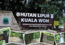 Kolam Air Panas Kuala Woh Di Perak Lokasi Yang Power Mrkumai Com Tips Melawat Cameron Highlands Jalan Tapah