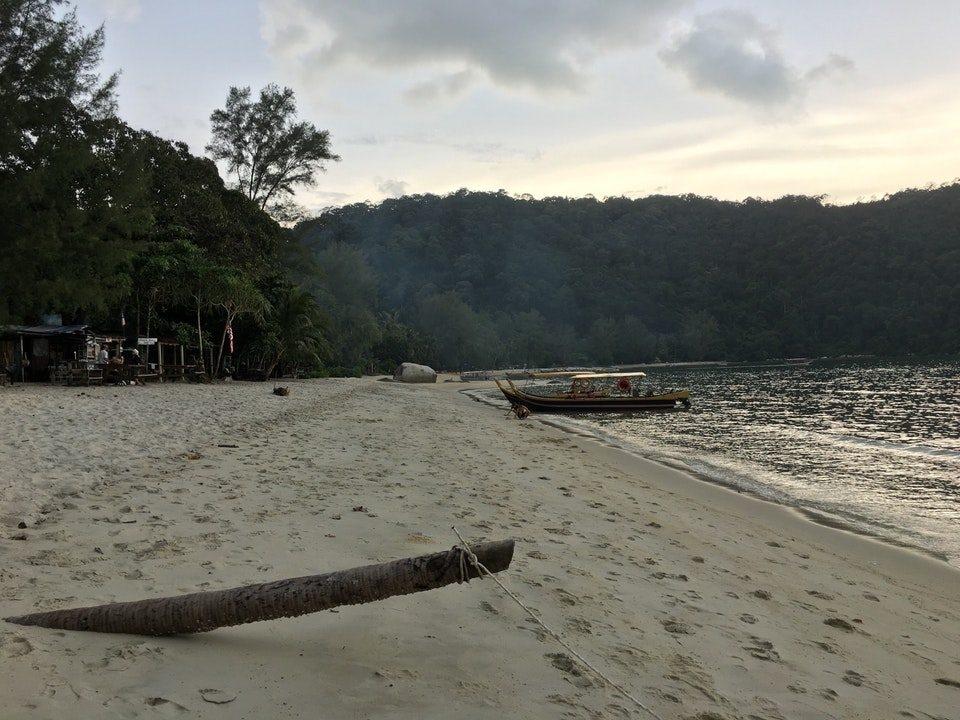 taman negara pantai kerachut monkey beach muka head