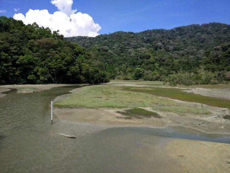 an afternoon hiking in taman negara pulau pinang penang national park meromictic lake at pantai kerachut