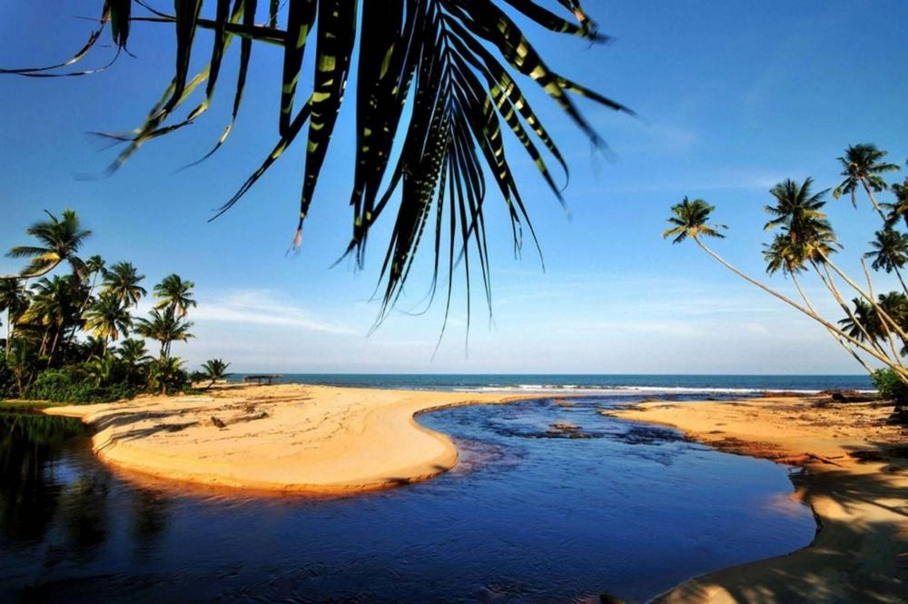 Pantai Rantau Abang Di Terengganu Tempat Menarik Yang Sangat Hebat Untuk Kita Singgah Of Pantai Rantau Abang Di Terengganu Tempat Menarik Yang Sangat Awesome Untuk Hari Keluarga
