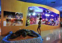Pantai Rantau Abang Di Terengganu Tempat Menarik Yang Sangat Hebat Untuk Melancong