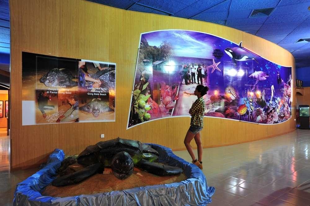 Pantai Rantau Abang Di Terengganu Tempat Menarik Yang Sangat Hebat Untuk Melancong Of Pantai Rantau Abang Di Terengganu Tempat Menarik Yang Sangat Awesome Untuk Hari Keluarga