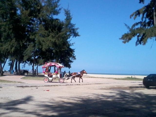 Pantai Rantau Abang Di Terengganu Tempat Menarik Yang Untuk Berehat Of Pantai Rantau Abang Di Terengganu Tempat Menarik Yang Sangat Awesome Untuk Hari Keluarga