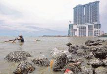 Pantai Sabak Di Kelantan Tempat Menarik Yang Hebat Untuk Kita Lawati