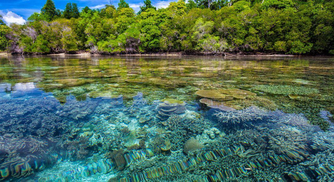 seperti surga 10 destinasi wisata di indonesia ini bikin kamu tercengang