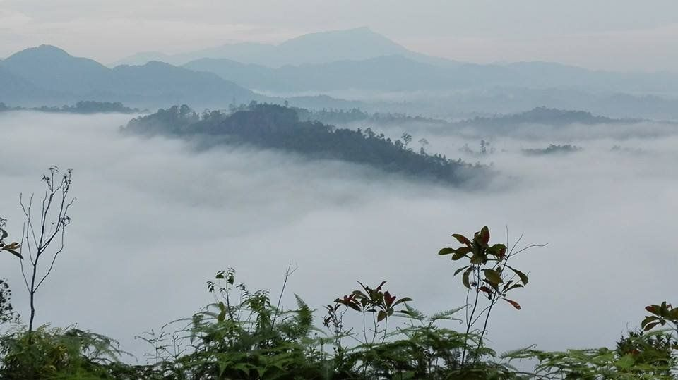 misty view from bukit panorama
