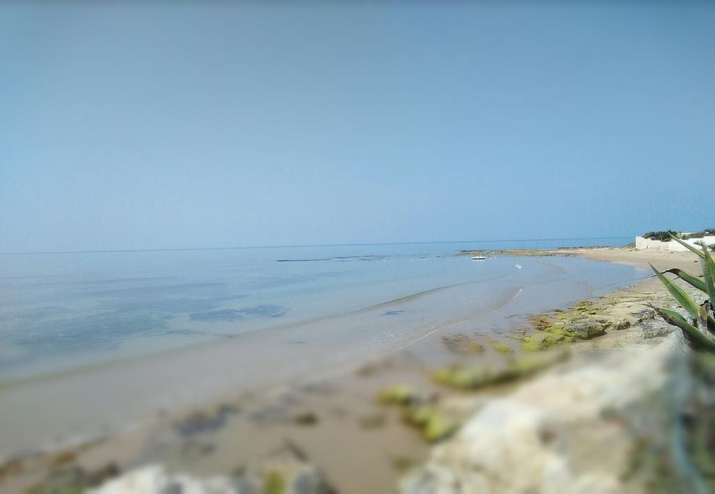 71 Gambar Pemandangan Pantai Arsir Terbaru