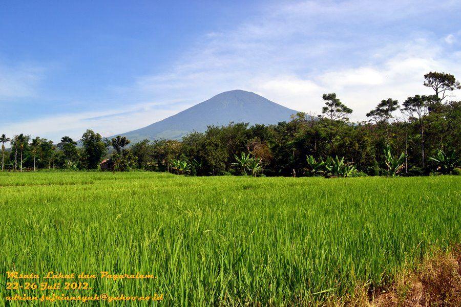 keasrian kota pagaralam dengan gunung dempo yang gagah perkasa dan hamparan sawah hijau yang indah
