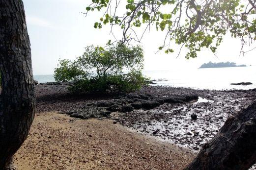 pemandangan yang indah di sekitar pulau konet foto khairunisah lokman