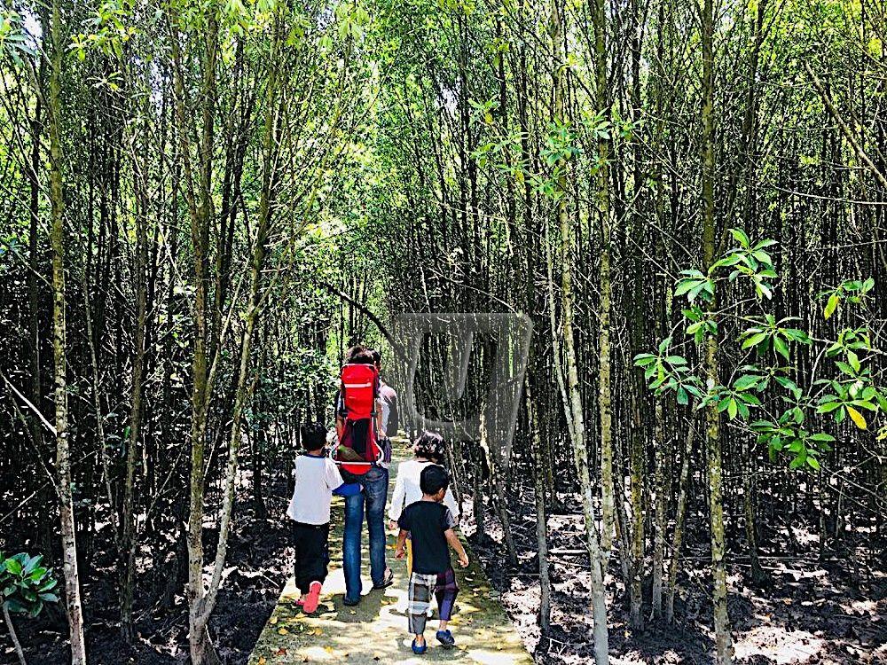 si kecil teruja di taman alam kuala selangor pelancongan utusan online